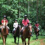 Forest - Nile Horseback Safaris Uganda